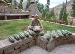 Ceremony---Cactus-